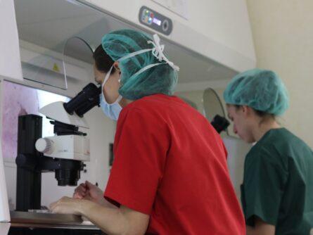 Laboratorio Clínica Ginemed Sevilla