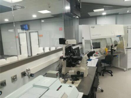 Laboratorio UHRA Quirónsalud – Ginemed Huelva